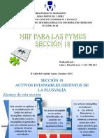 NIIF Para PYMES Sección 18-Expo 6