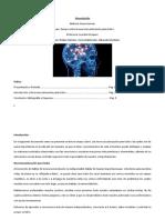 Ensayo Neurociencia