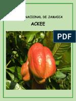 Fruta Nacional de Jamaica