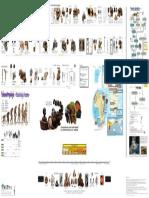paleoantropologia.pdf
