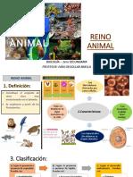 Reino Animal 1ero (2)