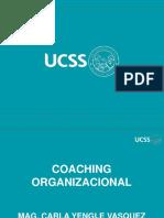 1. Coaching Organiz (1)