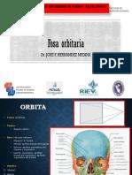 Fosa Orbitaria y Auditiva