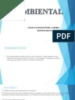 AMBIENTAL DESARROLLO