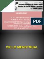 Presentación13.pptx