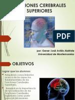 funciones mentales superiores