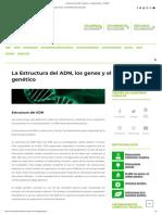 La Estructura Del ADN, Los Genes y El Código Genético - ChileBIO