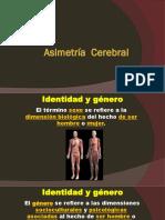 Asimetría Cerebral (1)