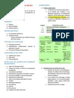 EXPLORACIÓN FISICA DEL RECIEN NACIDO.docx