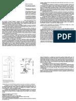 Guía de Estudio Dominancia Apical