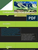 Componentes de las praderas.pptx