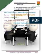 192089601-Plan-de-Marketing-de-Lopesa.docx