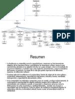 Mapa comportamiento resiliencia.pptx