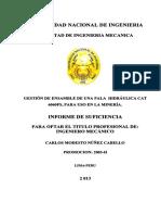 nunez_cc.pdf