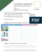 SEGUNDO PARCIAL 4TO BASICA-2.docx