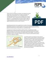 BACTÉRIE.pdf