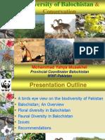 BalochistanPresentation.ppt
