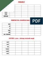 PREZENT.pdf