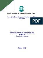 Estudio de Mercado de Cítricos en Benelux 2007