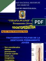 Terapia Pulpar en D. P. Jóvenes-10-10