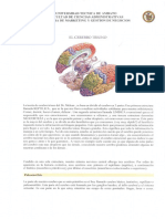 7.EL CEREBRO TRIUNO.pdf