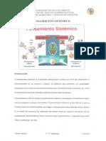 14.pensamiento sistemico.pdf