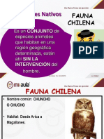 Apunte 1 Animales en Chile en Peligro de Extincion 93524 20190909 20180314 115729