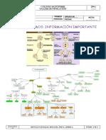 8°Biologia.pdf