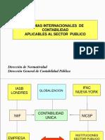 NICS_APLICABLES_SECTOR_PUBLICO (3).ppt