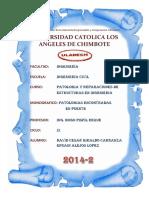 Patologia en Puente Casma