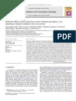 kurma hepatoprotektor.pdf