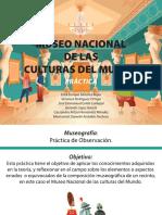 Museo de Las Culturas - Critica Destructiva