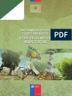 programa lengua indigena