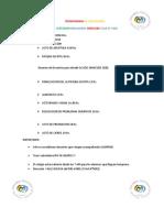 Cronograma de Actividades-1