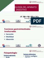 Digestivo USMP
