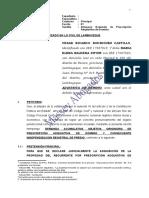 209803505 Modelo de Demanda de Prescripcion Adquisitiva de Dominio