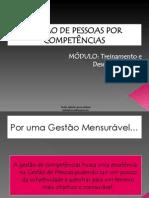 gesto-por-competncia-1221614123228083-8