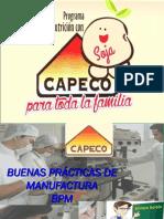 2-BPM-CAPECO - Toda la Familia.pdf
