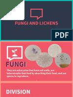 4.7 Fungi and Lichens (1).pptx