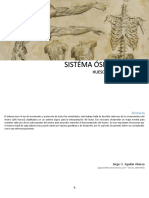 Sistema Óseo Humano - Jaguilar