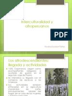 Interculturalidad y Afroperuanos 02072014_ Roxana Escobar