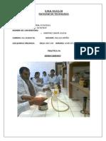 Informe 6 Hidrocarburos Organica