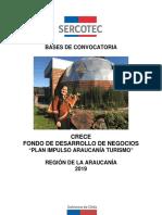Bases de Convocatoria Crece 2019 Plan Impulso Araucanía 2 Final