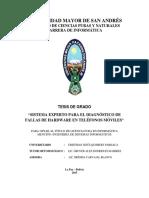 SISTEMA EXPERTO PARA EL DIAGNÓSTICO DE FALLAS DE HARDWARE EN TELÉFONOS MÓVILES