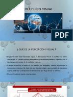 Percepción visual.pptx