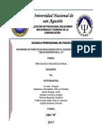 informe psicologia organisacional