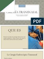 Cirugia Transnasal y Lifting Endoscopico