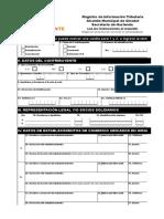 Formulario Registro Información Tributaria - Rit (1)