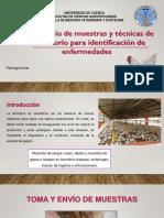 Patologia Aviar Muestras y Tecnicas...