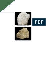 rock sedimentarias.docx